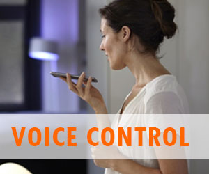 Voice control everywhere